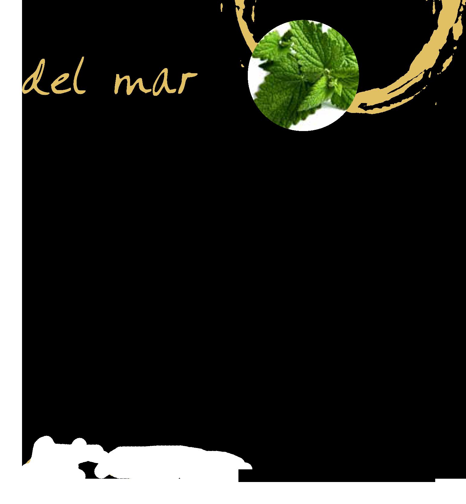 del-amr